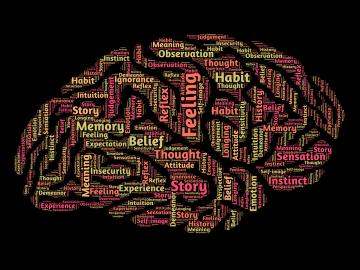 memoria e apprendimento