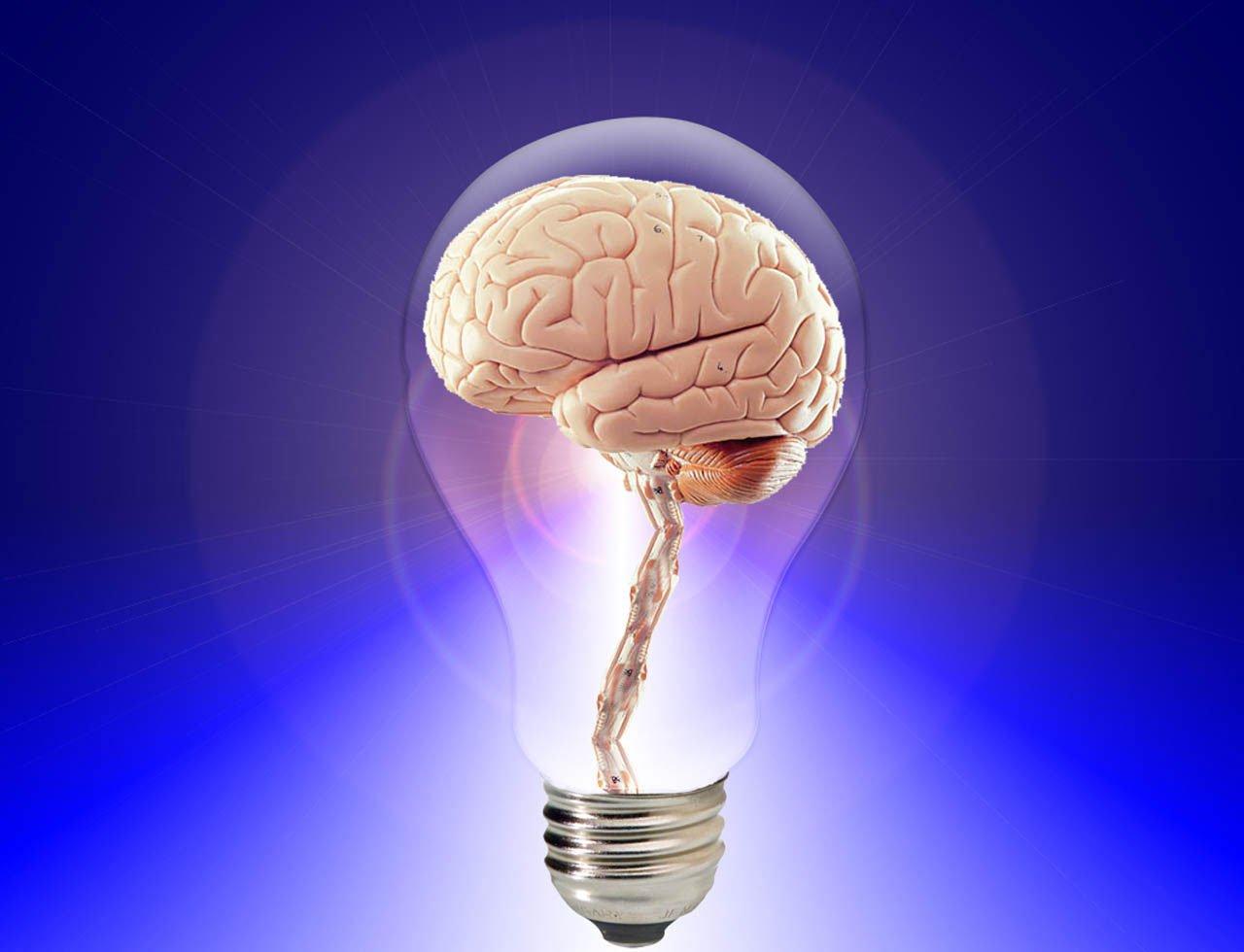 La teoria dei tre cervelli